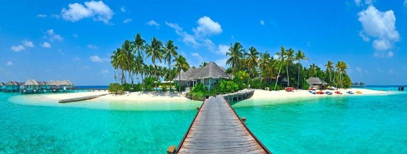 Océan turquoise, sable blanc et palmiers