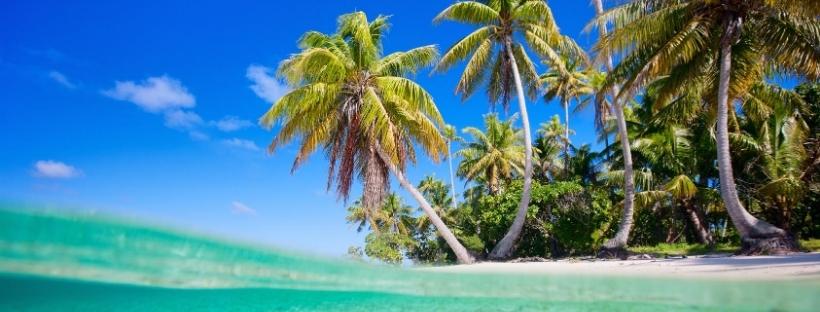 Eau turquoise, sable blanc, cocotiers