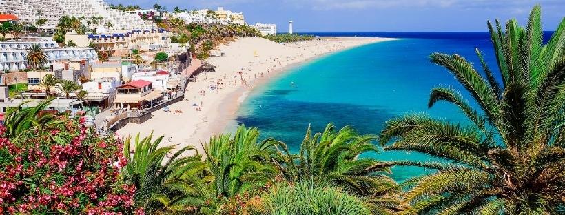 Bord de mer des Canaries, plage sable blanc, eau turquoise, palmiers