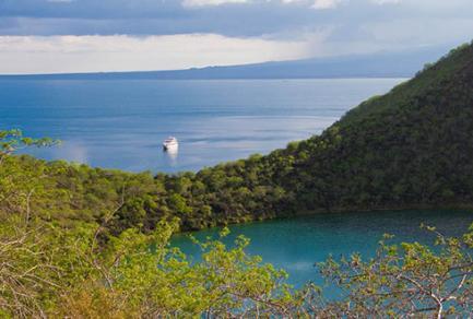 Elizabeth Bay, (Isabela, Galapagos) - Équateur