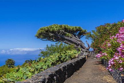 La Palma, Îles Canaries - Espagne