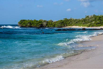 Las Bachas Isla Santa Cruz - Équateur