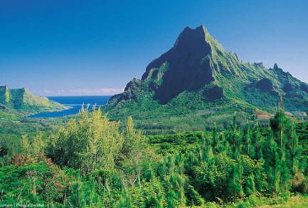 Moorea (Polynésie Française) - Polynésie française