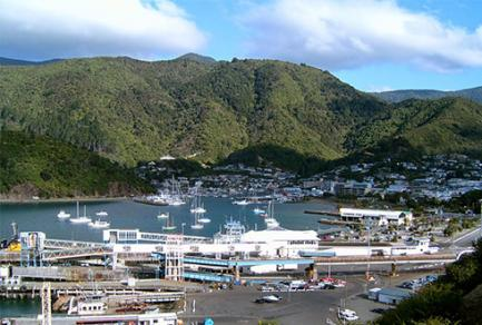 Picton (Nouvelle-Zélande) - Nouvelle-Zelande