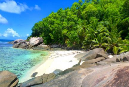 Moyenne island -