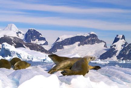 Île Astrolabe (Antarctique) l -