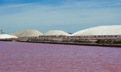 sel de Aigues-Mortes rose, étendus sur toute la photo avec des dunes de sables blanches au loin.