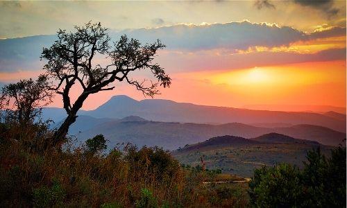 paysage au coucher du soleil d'Afrique