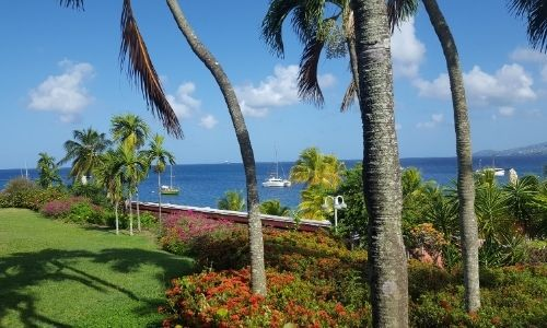 jardin fleuri au premier plan avec des troncs de palmier, au fond la mer