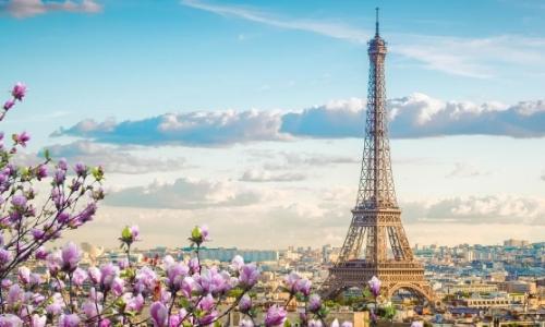 Vue aérienne sur Paris avec fleurs, habitations, Tour Eiffel