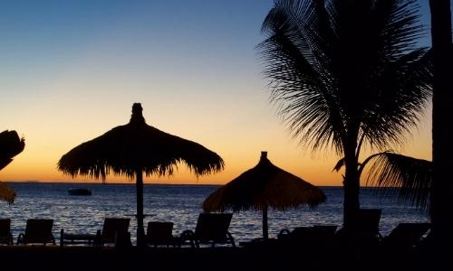 Coucher de soleil sur une plage avec parasols, transats, palmier