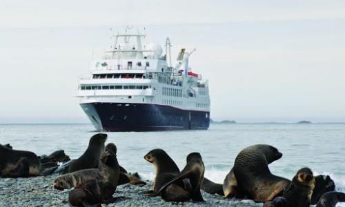 Un bateau de la flotte Silver Sea Cruises vu par un phoque