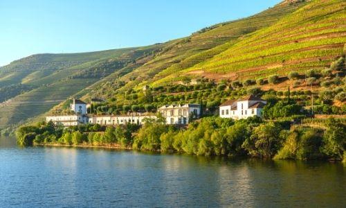 quinta sur le bord du fleuve Douro au Portugal, aux pieds de paysages vallonés