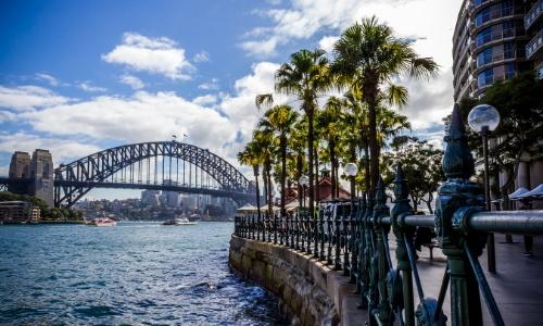 Le port de Sydney traversé par le Harbour Bridge, avec arbres, rue passante