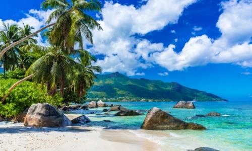 Photo d'une plage avec palmier, sable blanc et eau turquoise aux Seychelles