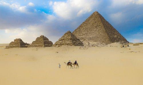 Chameaux se baladant devant les pyramides de Gizeh