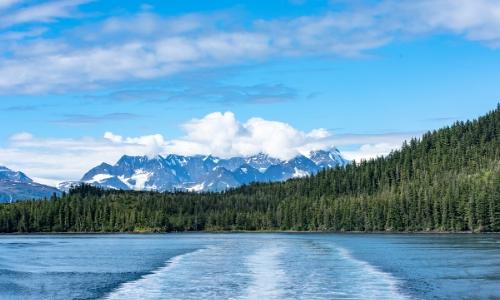 Vue sur un lac, avec arbres et montagnes enneigées an arrière-plan