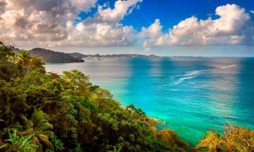 Vue sur la mer des Caraïbes avec végétation luxuriante, eaux limpides
