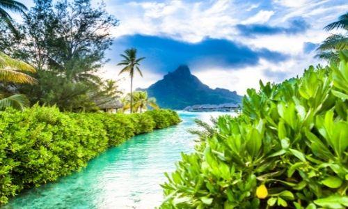 Fleuve d'eau turquoise de Polynésie entouré d'une nature verdoyante
