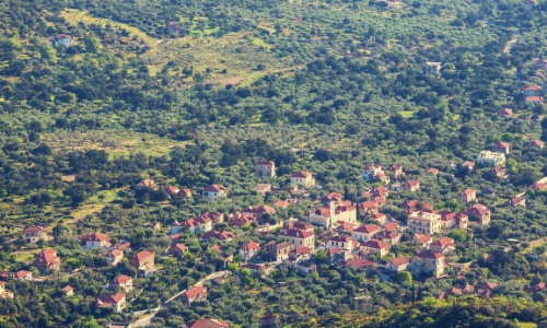 Les collines de Corfou plantées de chênes et d'oliviers