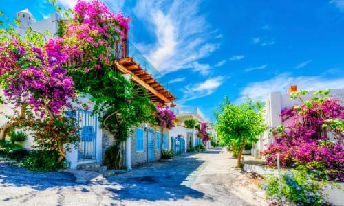 Bodrum, ville en Turquie avec maisons aux volets bleus, fleurs sur les maisons
