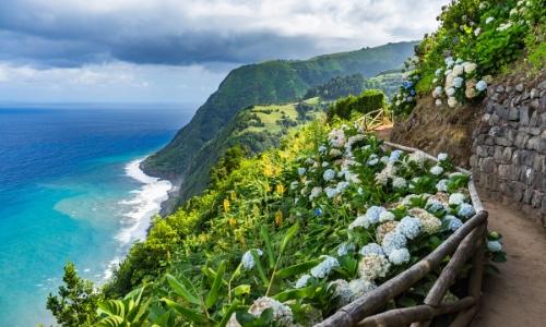 Vue sur la côte des Açores avec nature, vue mer, fleurs