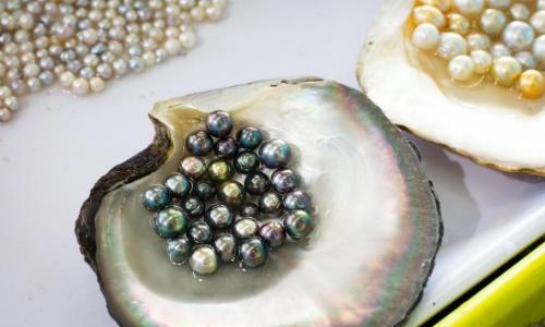 Coquillage avec perles à l'intérieur