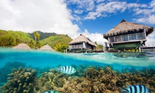 Vue depuis la mer avec poissons, et aperçu sur 2 maisons pieds dans l'eau