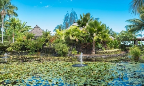 Jardin avec nénuphars, diversité de plantes et arbres, verdure
