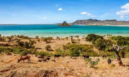 Paysage de Madagascar, eau turquoise, végétation, terre