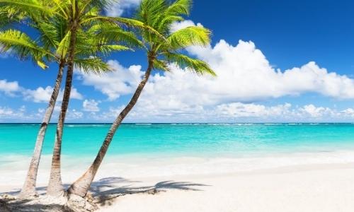 Une plage de sable blanc, avec palmiers, eau turquoise