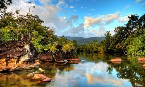 Vue sur une rivière tropicale à Madagascar avec verdure qui l'entoure