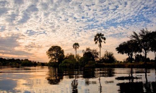 cliché à l'aube du fleuve du zambèze en Afrique avec des palmiers dans l'ombre en fond