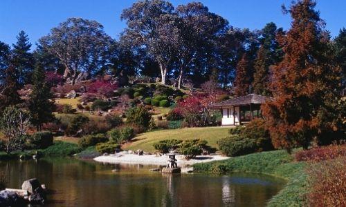 magnifique jardin de verdure et d'arbres rouge/bordeaux avec un lac au milieu
