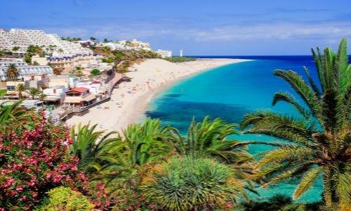 Paysage de la côté des îles Canaries