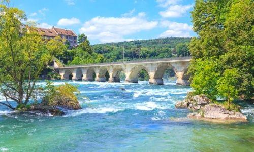 Paysage nature avec le fleuve du Rhin et un pont en arrière plan