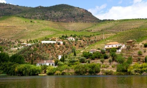 Les berges du Douro et ses vignobles à flanc de montagne